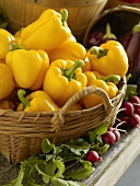 Basket of Yellow Bell Peppers