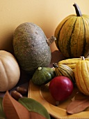 Various Gourds and Squash