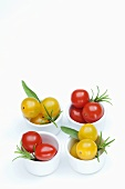 Red and yellow cherry tomatoes, sage and rosemary