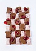 Various pieces of chocolate with cranberries