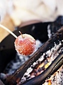 An apple being grilled