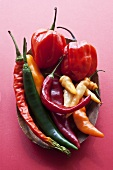 Various chilli peppers in a wooden bowl