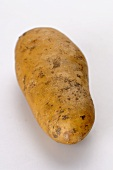 A Belle de Fontenay potato