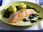 Salmon fillet with lemon sauce, spinach and potatoes