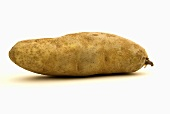 One Idaho Potato on White Background