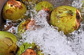 Coconuts in water