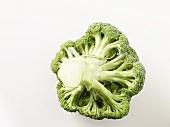 Underside of broccoli