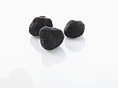 Three Black Truffle Mushrooms on White Background