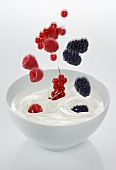 Berries falling into a bowl of yogurt