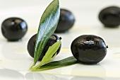 Schwarze Oliven mit Blättern (Nahaufnahme)