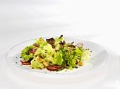 Frühlingssalat mit Radieschen und Croutons