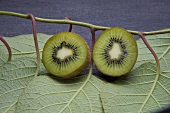 A halved kiwi with twigs and leaves