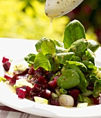 Lamb's lettuce with beetroot being drizzled with salad dressing