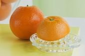 Oranges with citrus squeezer