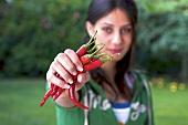A woman holding fresh red chilli peppers