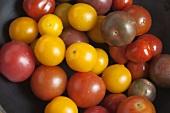 Colorful Mini Heirloom Tomatoes
