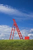 Red ladder and red case on green grass