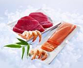 Tuna fish fillets, salmon fillets and shrimp