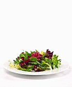 Mixed organic salad garnished with ice beetroot