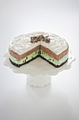 Grasshopper Ice Cream Cake; Layered Mint Chocolate Chip and Chocolate Ice Cream; Slice Removed