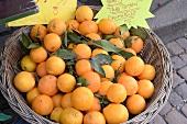 Fresh, organic oranges at the market