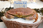 Cooked crab in the market