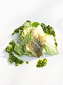 Fish fillet with pesto and pureed basil