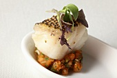 Fish fillet with vegetable salad