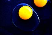 Aufgeschlagene rohe Eier (Draufsicht)
