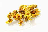 Dried chrysanthemums
