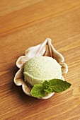 A scoop of peppermint ice cream with fresh mint