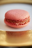 A Single Macaroon on a Gold and White Plate