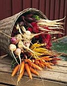 Various types of root vegetables in a basket