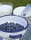 A bowl of blueberries, a jug of milk and dessert on the table