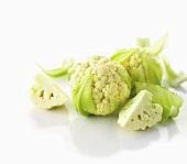 Mini-cauliflower