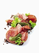 Rye bread with salami and pickles
