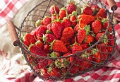 Fresh strawberries in a wire basket