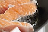 Raw salmon steaks (close-up)