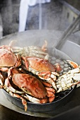 Crabs cooking