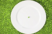 A pea on a white plate