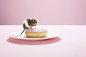 Mouse and doughnut on plate