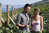 A couple with white wine in a vineyard