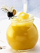 Blossom honey in jar and on spoon; bee