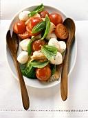 Bread salad with tomatoes, mozzarella, basil; salad servers