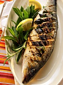 Barbecued sea perch with lemon