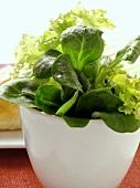 Small mixed salad in bowl