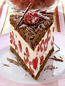A piece of chocolate raspberry gateau with chocolate curls