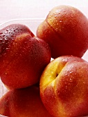 Nectarines with drops of water in plastic container
