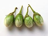 Vier grün-weisse Auberginen
