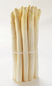 A bundle of white asparagus (standing)